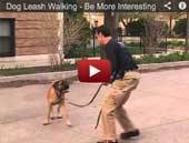 Dog Leash Walking - Be More Interesting